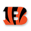 Cincinnati Bengals Customized Jerseys Online